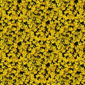 Very Blooming Yellow (pattern) by Yampimon