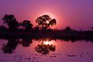Sundown at Xaxanaka by Neville Jones