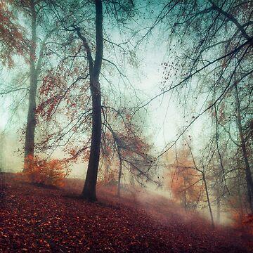 Fall Feeling - Colourful Autumn Impression by DyrkWyst