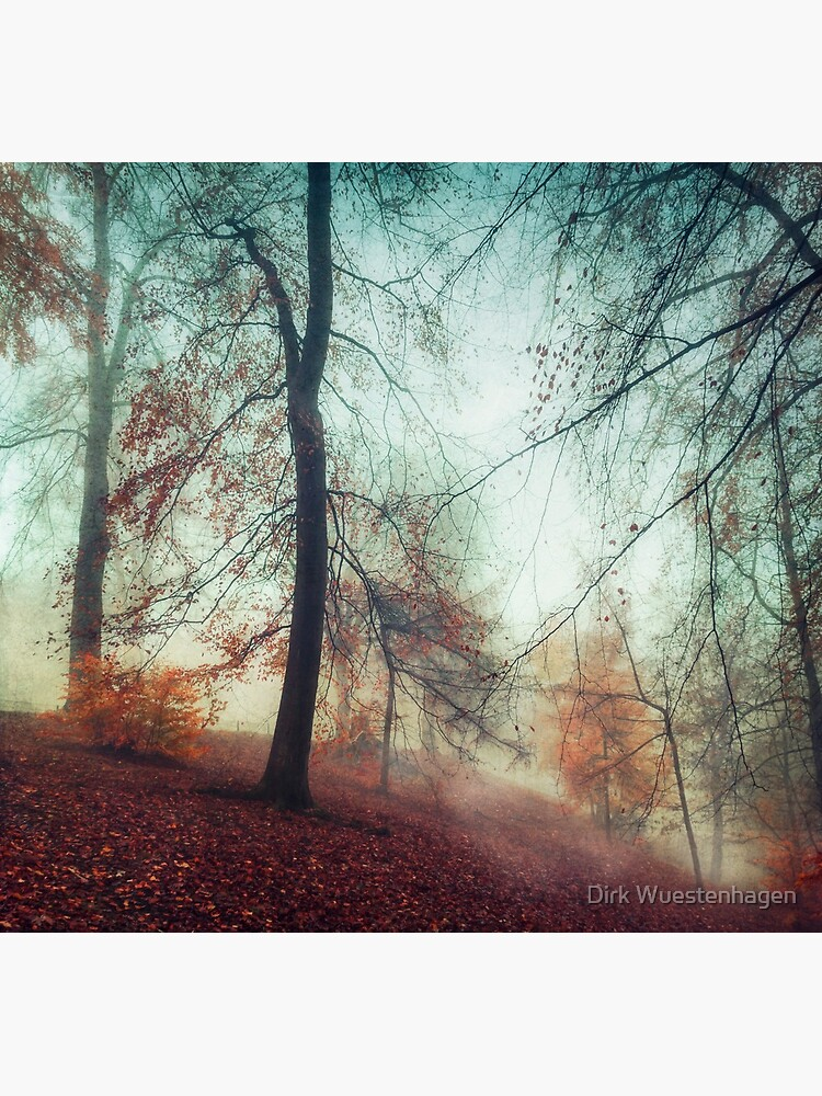 Fall Feeling - Colourful Autumn Impression by DyrkWyst