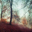 Fall Feeling - Colourful Autumn Impression by Dirk Wuestenhagen
