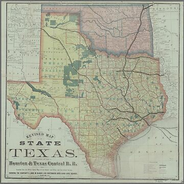 Vintage Texas State map by Geekimpact