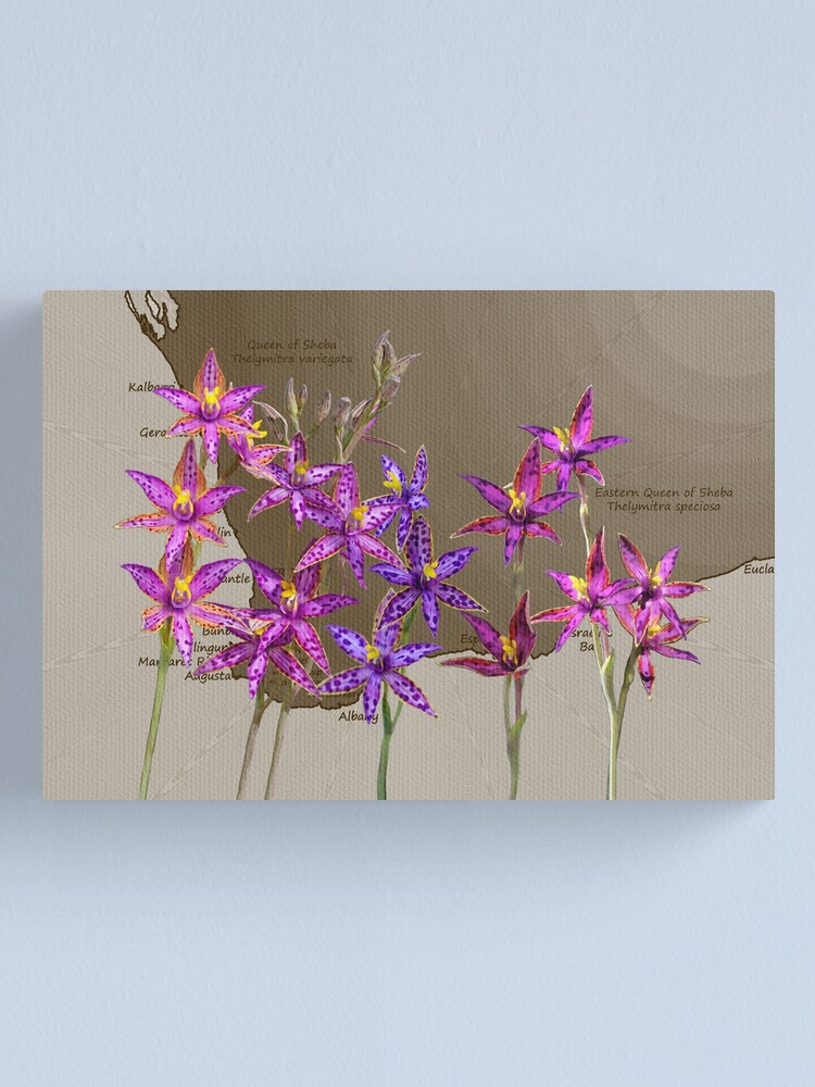 Alternate view of Map SW with Queen of Sheba Orchids Canvas Print