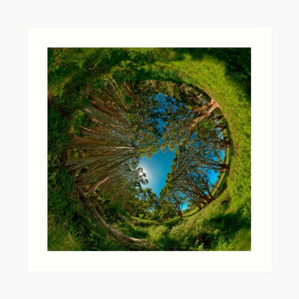 Stereographic view from Lachlan Swamp Art Print