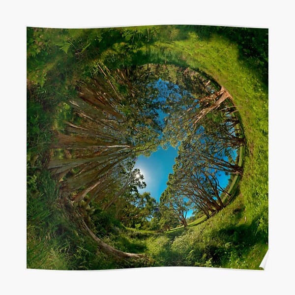 Stereographic view from Lachlan Swamp Poster