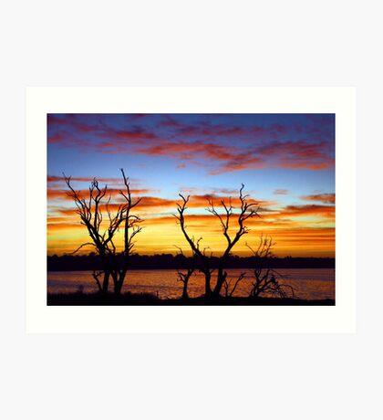 Yangebup Lake - Western Australia  Art Print