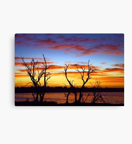 Yangebup Lake - Western Australia  Canvas Print