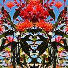 Flowering Gum Sky- Outrageous Orange by KazM