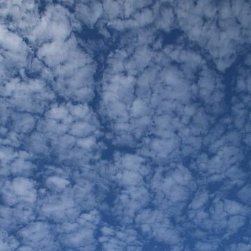 Altocumulus Abstract 2 by wselander