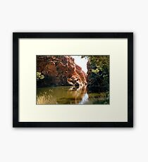 Ellery Creek Big Hole Framed Print