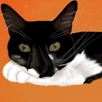 Sylvester the black and white cat by Valiante