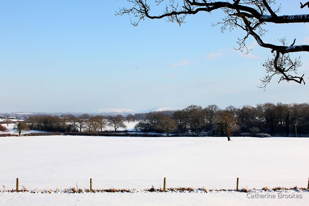 Winter wonderland by Catherine Brookes