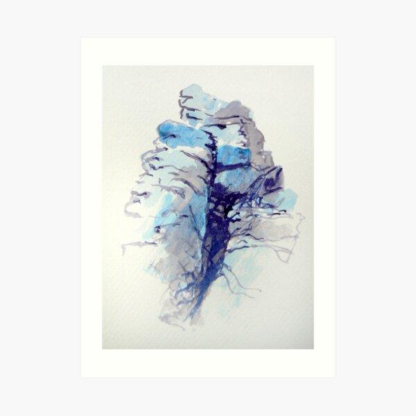 Granite Dartmoor 5 Art Print