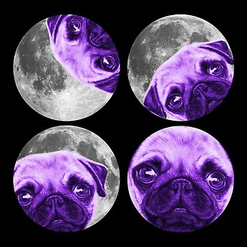 Pug Solar Eclipse Of The Moon by brodyquixote