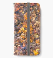 Clear Water Flows Over Golden Brown Pebbles Stream Abstract iPhone Wallet/Case/Skin