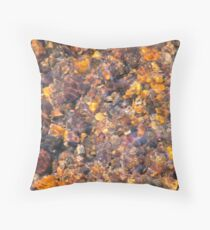 Clear Water Flows Over Golden Brown Pebbles Stream Abstract Throw Pillow