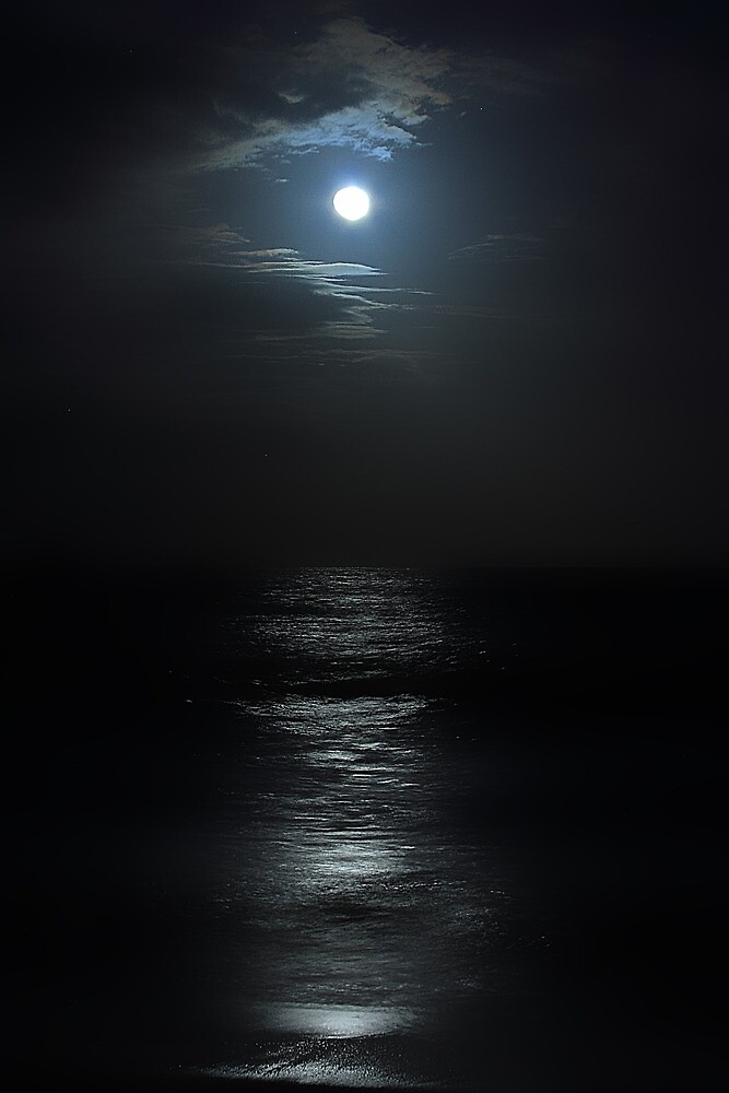 Caribbean Blue Moon by Rob Diffenderfer