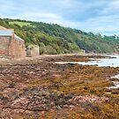 Kingsand, Cornwall by Chris Warham