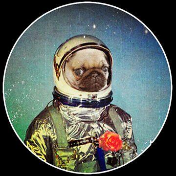 Astropug by darklordpug