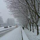 Snow Patrol- Mallow Town by Jason Kiely