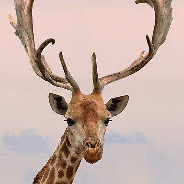 Giraffe with horns by AgustiLopez