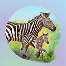 Zebras in the flower field by Birgit Schiffer