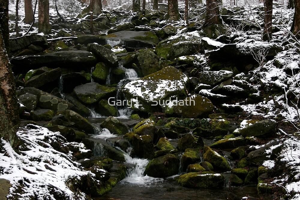 Snowy Appalachian Creek by Gary L   Suddath