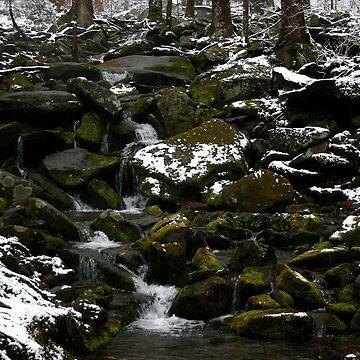Snowy Appalachian Creek by suddath
