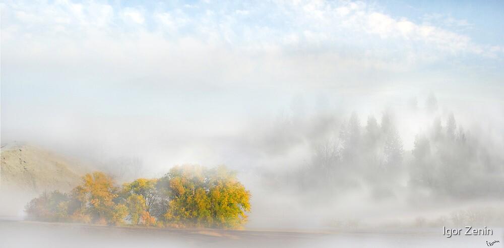 Dreamland by Igor Zenin