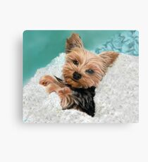 Chewie the Adorable Yorkie Metal Print