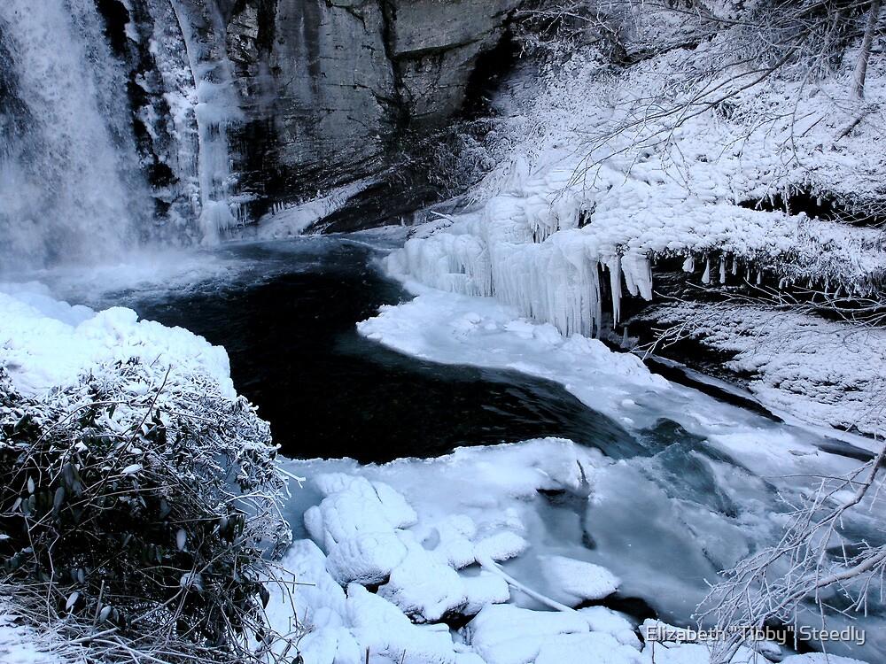 Winter Wonderland by Tibby Steedly