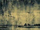 Winter's Silence by Dana DiPasquale