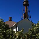 Historic Sanibel Lighthouse by Virginia N. Fred