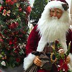 December Joy by Sandra Fortier