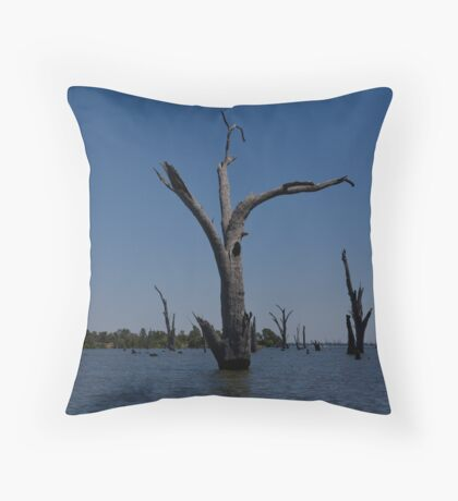 Water of life Throw Pillow