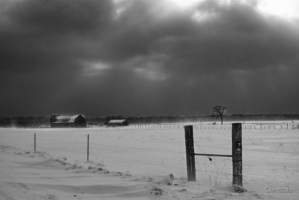 Snow Storm by Chintsala