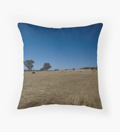 Make hay while the sun shines part 2 Throw Pillow
