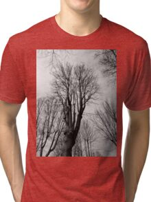 Wilt Beauty Tri-blend T-Shirt