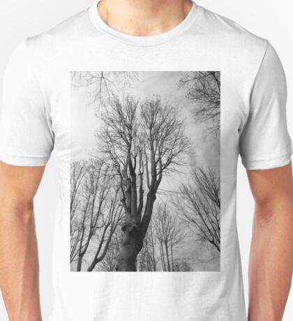 Wilt Beauty T-Shirt
