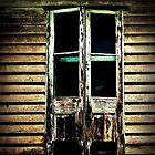 The door by John Medbury (LAZY J)