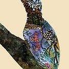 The Woodpecker by Kanika Mathur  Design