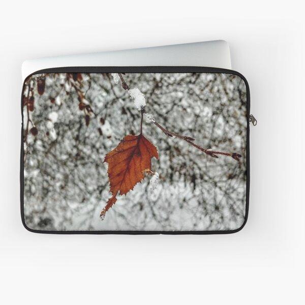 leaf on a snowy tree Laptop Sleeve