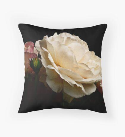 simply stunning Throw Pillow