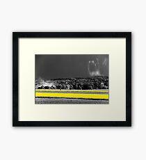 B&Y 11 Framed Print