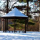 Gazebo in the Winter  by Michelle BarlondSmith