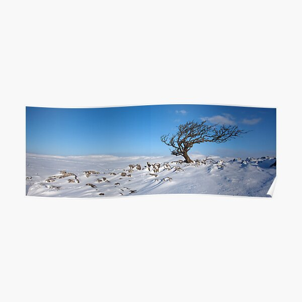 A Yorkshire Winter Wilderness Poster