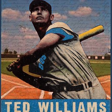 Ted Williams  by ValentinaHramov