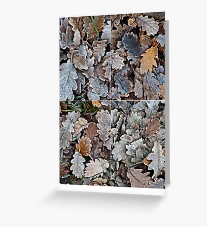 Frozen leaves Greeting Card