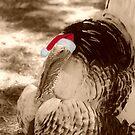 Weihnachten Türkei von GriffMAD