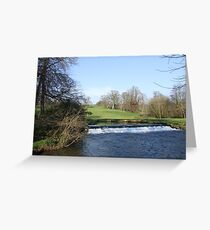 Doneraile Wildlife Park, Cork Greeting Card